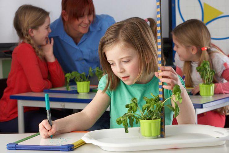 science - primary teaching jobs
